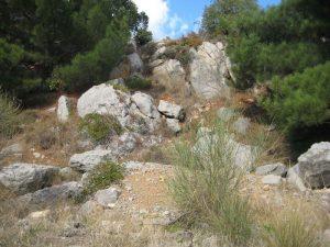Классический каменистый пейзаж - залог того, что на участке располагаются скальные грунты.