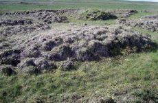 Фундамент на пучинистых грунтах
