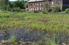 Фундамент на болотистых торфяных грунтах