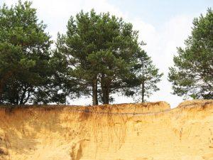 Песчаные почвы предполагают определенные сложности при возведении фундаментов